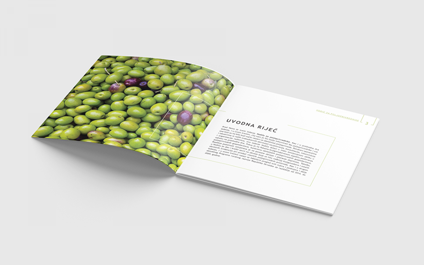 BROCHURE DESIGN - AGRICULTURAL GUIDE