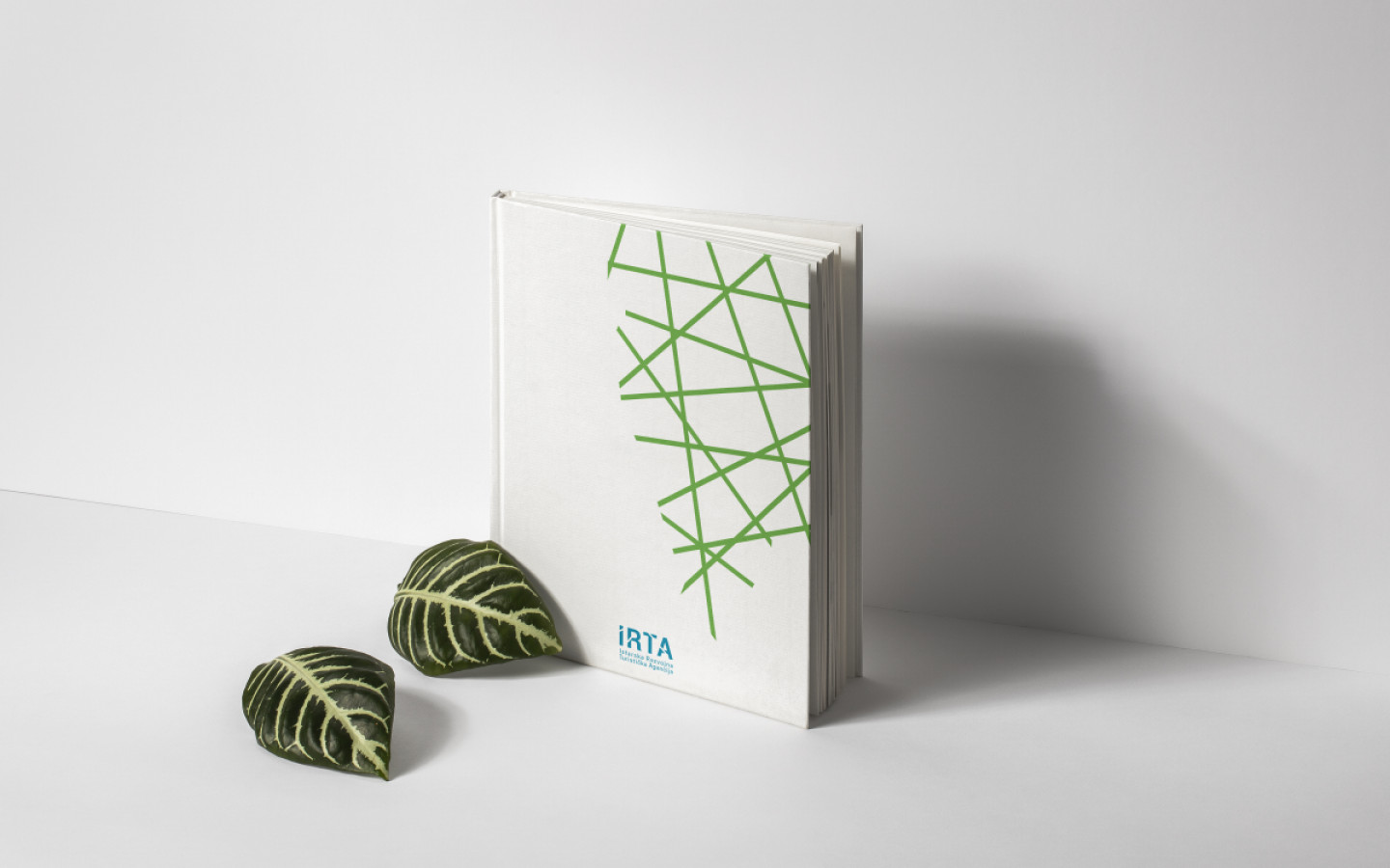VISUAL IDENTITY -  ISTRIAN TOURISM DEVELOPMENT AGENCY