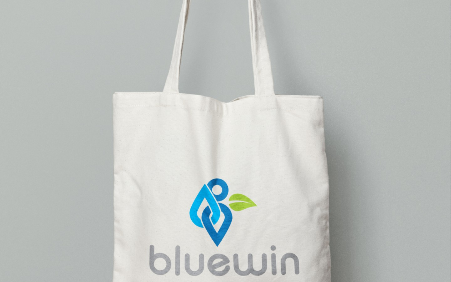 VISUAL IDENTITY - BLUEWIN